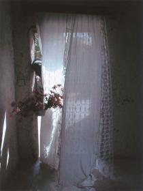Mohamed Camara, Chambre malienne no 20. Ma cousine Sounouba me tend des fleurs, 2002. Deutsche Bank Collection. Courtesy Galerie Pierre Brull�, Paris